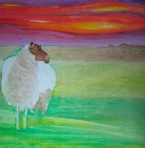 Sussex Sheep     Oil on Board 70x70cm