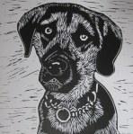 A Dog's Life black