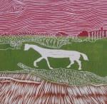 Horse 14 Feb