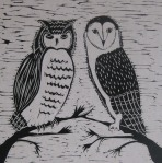 cropped owls