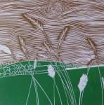 Downland Grass 1