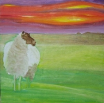 Sussex Sheep new